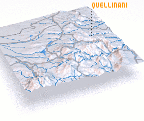 3d view of Quellinani