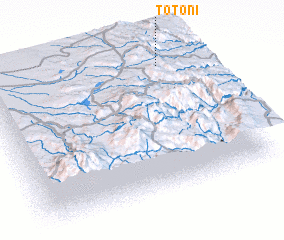 3d view of Totoni