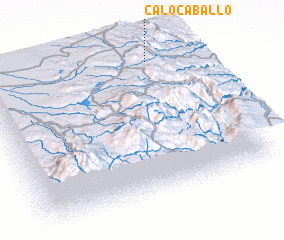 3d view of Calocaballo