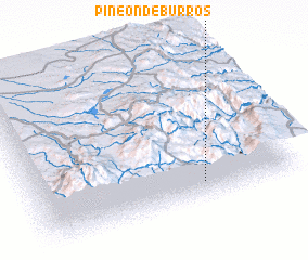 3d view of Pineon de Burros