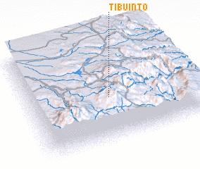 3d view of Tibuinto