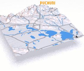 3d view of Puchuni