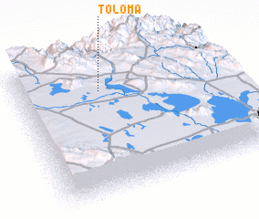 3d view of Toloma