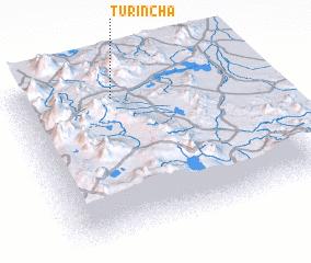 3d view of Turincha