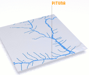 3d view of Pituna