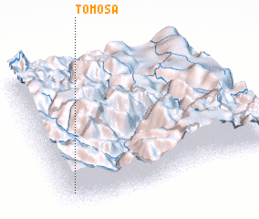 3d view of Tomosa