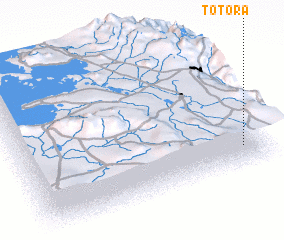 3d view of Totora