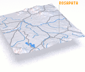 3d view of Rosapata
