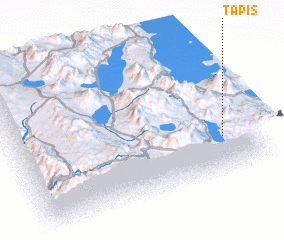 3d view of Tapis