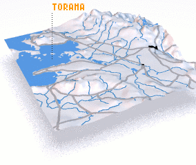 3d view of Torama