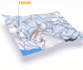 3d view of Tapuri