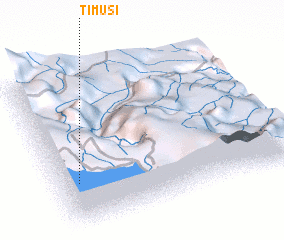 3d view of Timusí