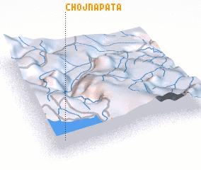 3d view of Chojña Pata