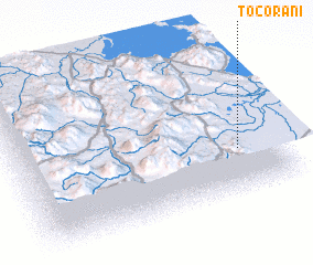 3d view of Tocorani