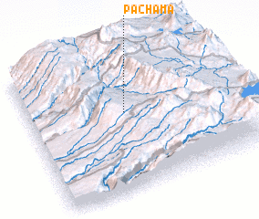 3d view of Pachama