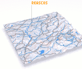 3d view of Reascos