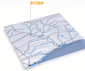 3d view of Bicada