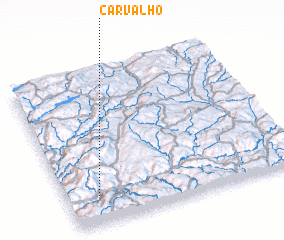 3d view of Carvalho