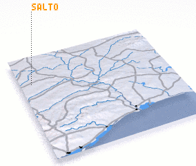 3d view of Salto