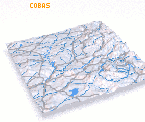 3d view of Cobas