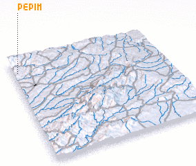 3d view of Pepim