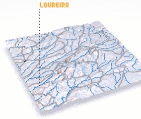 3d view of Loureiro
