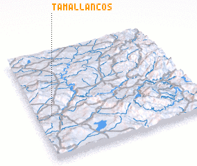3d view of Tamallancos