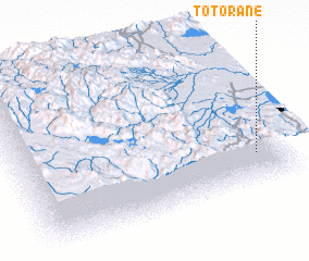 3d view of Totorane