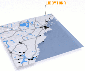 3d view of Libbytown