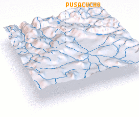 3d view of Pusacucho
