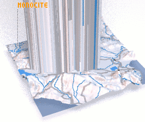 3d view of Monocite