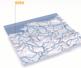 3d view of Duro