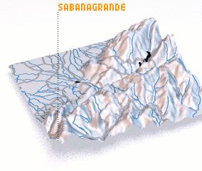 3d view of Sabana Grande