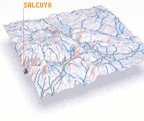 3d view of Salcuyo