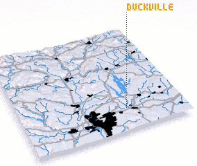 3d view of Duckville