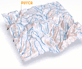 3d view of Puyca