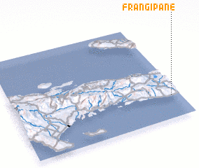 3d view of Frangipane
