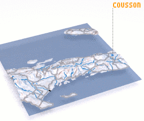 3d view of Cousson