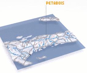 3d view of Pétabois