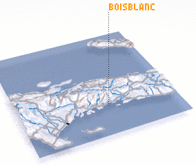 3d view of Bois Blanc