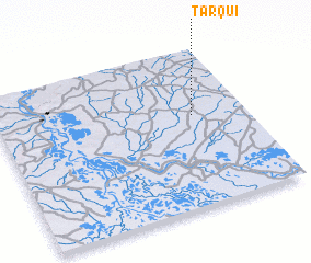 3d view of Tarqui
