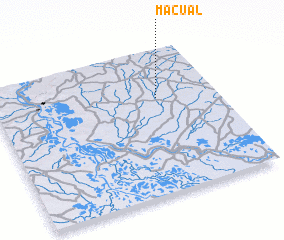 3d view of Macual