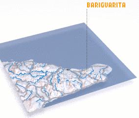 3d view of Bariguarita