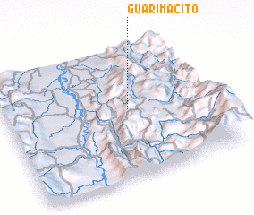 3d view of Guarimacito