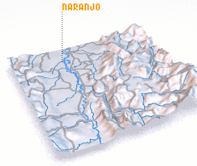 3d view of Naranjo