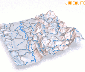 3d view of Juncalito
