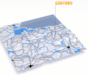 3d view of Guayabo