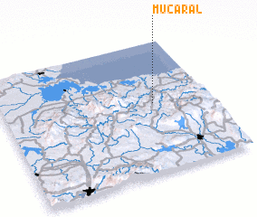 3d view of Mucaral
