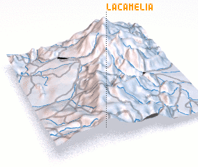 3d view of La Camelia