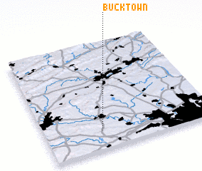3d view of Bucktown